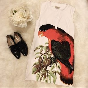 Dee Vee by Diana Vickers Parrot Print Dress.